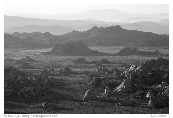 Wonderland of rocks from Ryan Mountain at sunset. Joshua Tree National Park (black and white)