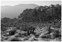 Boulder outcrop and ridge, Indian Cove. Joshua Tree National Park ( black and white)