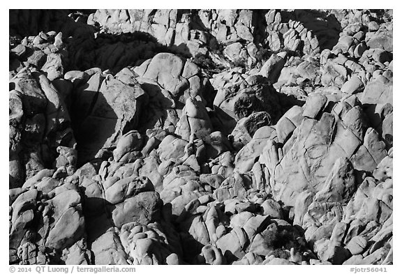 Boulder outcrop detail, Indian Cove. Joshua Tree National Park (black and white)
