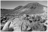 Malapai Hill. Joshua Tree National Park ( black and white)