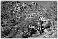 Hiking down Hugh Norris Trail amongst saguaro cactus. Saguaro National Park, Arizona, USA. (black and white)