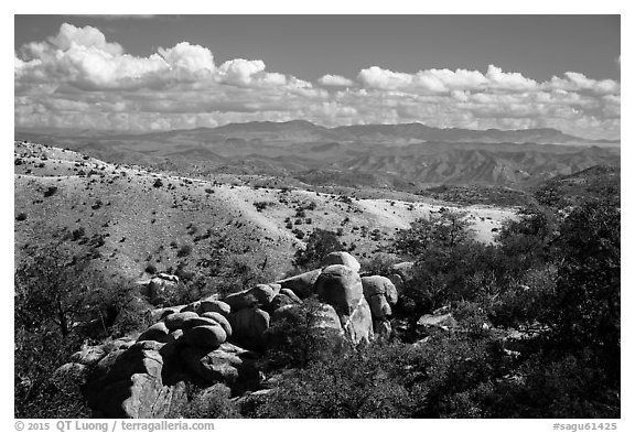 Boulders, Rincon Mountains foothills. Saguaro National Park (black and white)