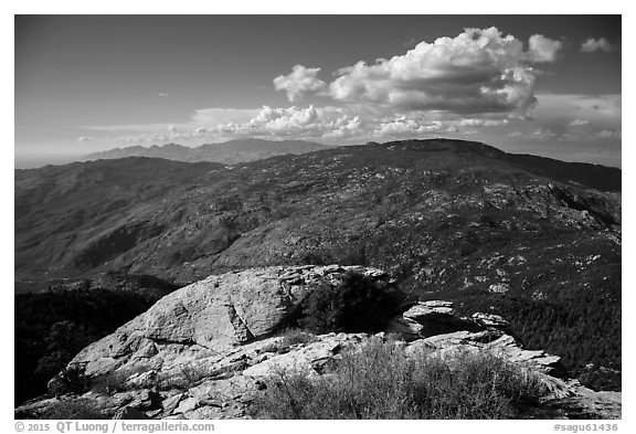 Mica Mountain from Rincon Peak. Saguaro National Park (black and white)