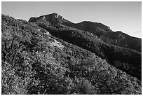 Rincon Peak at sunset. Saguaro National Park ( black and white)