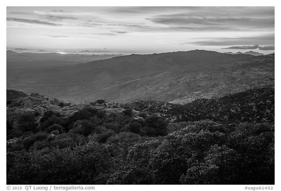 Sunset from Rincon mountains. Saguaro National Park (black and white)