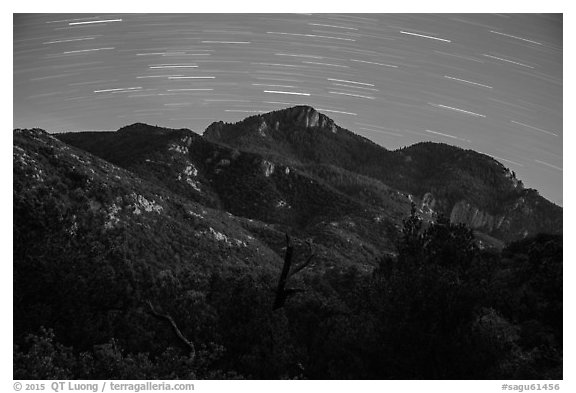 Rincon Peak at night with star trails. Saguaro National Park (black and white)