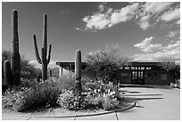 Rincon Visitor Center. Saguaro National Park ( black and white)