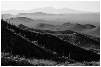 Desert mountains with saguaro-covered ridges. Saguaro National Park ( black and white)