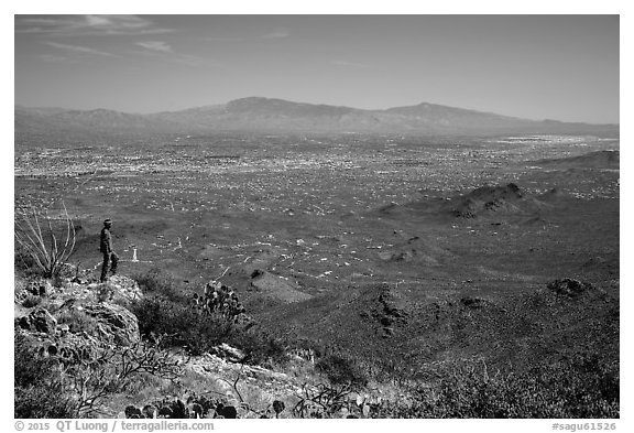 Visitor looking, Wasson Peak overlooking Tucson. Saguaro National Park (black and white)