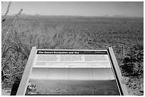 Desert Ecosystem interpretive sign. Saguaro National Park ( black and white)