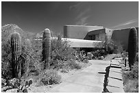 Red Hills Visitor Center. Saguaro National Park ( black and white)