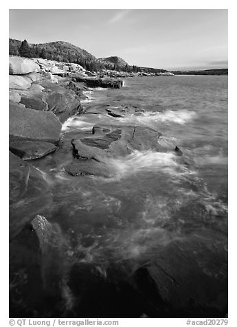 Pink granite slabs on the coast near Otter Point, morning. Acadia National Park (black and white)