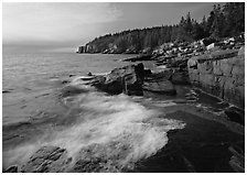 Pink granite slabs on the coast near Otter Point, morning. Acadia National Park ( black and white)