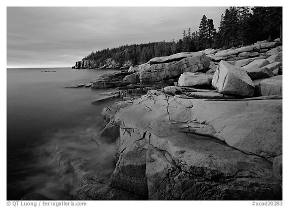 Granite slabs and Otter Point at sunrise. Acadia National Park (black and white)