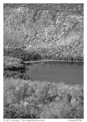Eagle Lake, surrounded by hillsides covered with colorful trees in fall. Acadia National Park (black and white)
