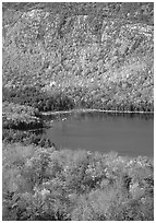 Eagle Lake, surrounded by hillsides covered with colorful trees in fall. Acadia National Park, Maine, USA. (black and white)