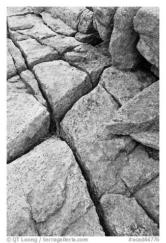 Pink granite slab with cracks. Acadia National Park (black and white)