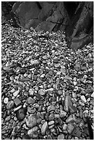 Pebbles and rock slabs. Acadia National Park, Maine, USA. (black and white)