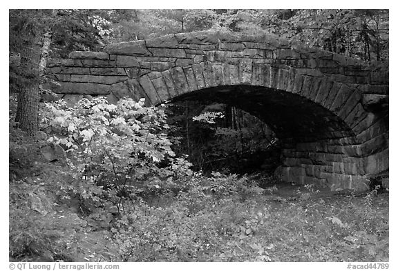 Carriage road bridge. Acadia National Park (black and white)
