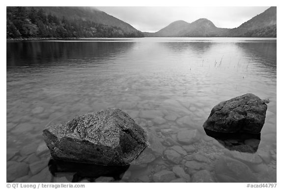 Two boulders in Jordan Pond on foggy morning. Acadia National Park (black and white)