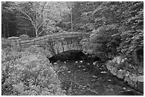 Carriage road bridge crossing stream. Acadia National Park, Maine, USA. (black and white)