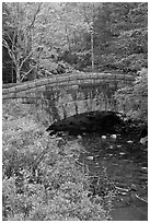 Stone bridge over stream. Acadia National Park, Maine, USA. (black and white)