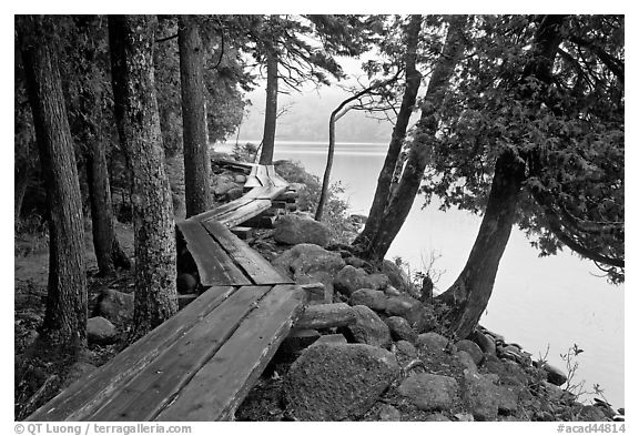 Boardwalk on shores of Jordan Pond. Acadia National Park (black and white)