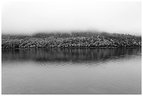 Hill reflected in Jordan Pond with top covered by fog. Acadia National Park, Maine, USA. (black and white)