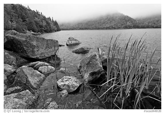 Jordan pond shore in a fall misty day. Acadia National Park (black and white)