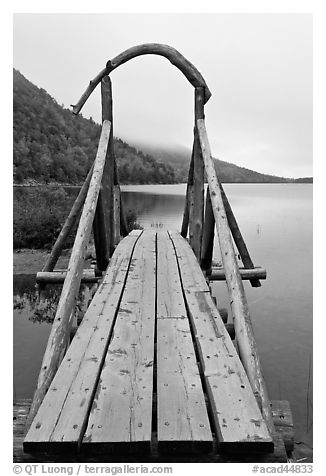 Footbridge and fog in autumn. Acadia National Park (black and white)