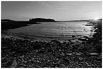 Cove and Pond Island, sunset, Schoodic Peninsula. Acadia National Park, Maine, USA. (black and white)