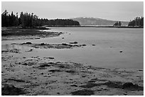West Pond and snowy Cadillac Mountain, dawn, Schoodic Peninsula. Acadia National Park ( black and white)