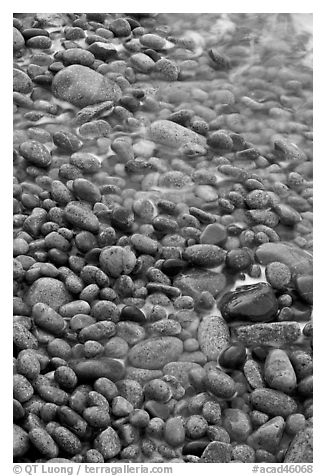 Close-up of pebbles and water, Schoodic Peninsula. Acadia National Park (black and white)
