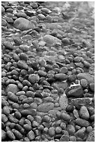 Close-up of pebbles and water, Schoodic Peninsula. Acadia National Park ( black and white)