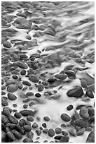 Close-up of pebbles in surf, Schoodic Peninsula. Acadia National Park ( black and white)