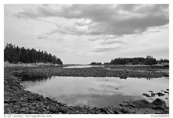 East Pond, Schoodic Peninsula. Acadia National Park (black and white)