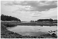 East Pond, Schoodic Peninsula. Acadia National Park ( black and white)