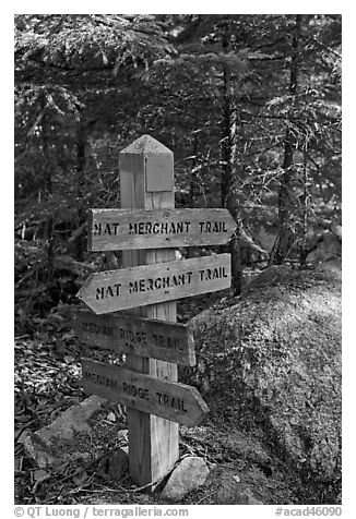 Signs at trail junction, Isle Au Haut. Acadia National Park (black and white)
