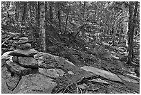 Cairn on trail, Isle Au Haut. Acadia National Park, Maine, USA. (black and white)