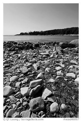 Streams flows into cove, Isle Au Haut. Acadia National Park (black and white)