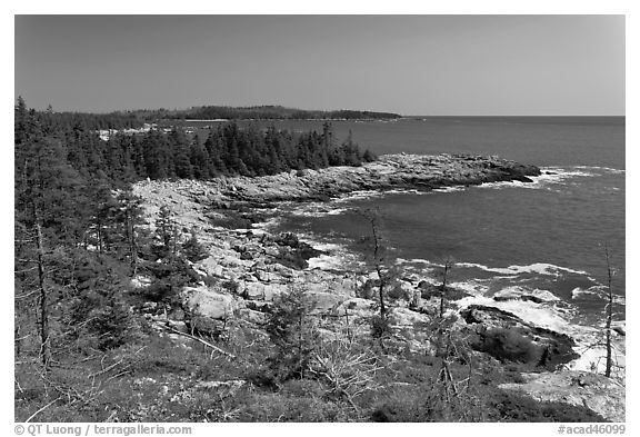 Isle Au Haut shoreline. Acadia National Park (black and white)