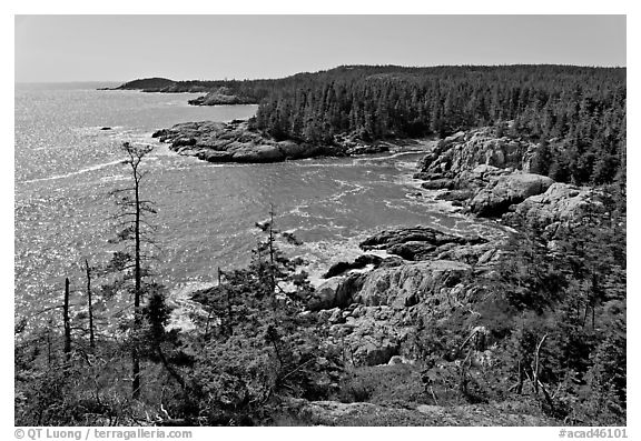 Coastline seen from Goat Trail, Isle Au Haut. Acadia National Park (black and white)