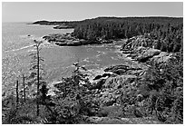 Coastline seen from Goat Trail, Isle Au Haut. Acadia National Park, Maine, USA. (black and white)
