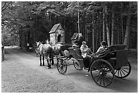 Horse carriage. Acadia National Park, Maine, USA. (black and white)