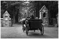 Carriage passing through carriage road gate. Acadia National Park, Maine, USA. (black and white)