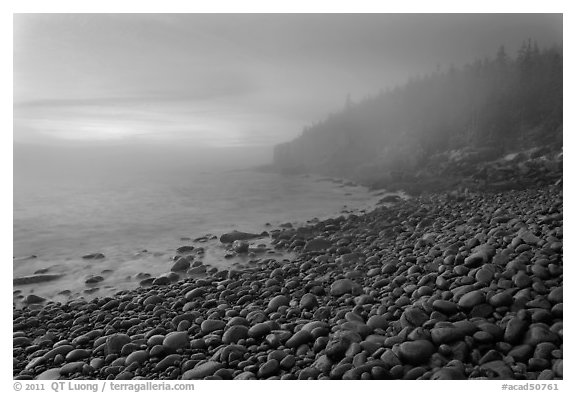 Boulder beach and cliffs in fog, dawn. Acadia National Park, Maine, USA.