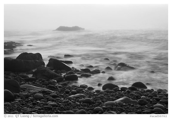 Boulders and ocean, foggy sunrise. Acadia National Park (black and white)