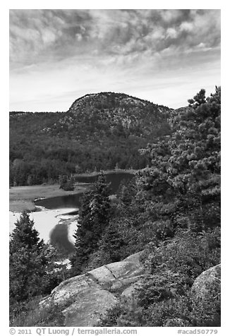 Tidal creek and Behive. Acadia National Park (black and white)