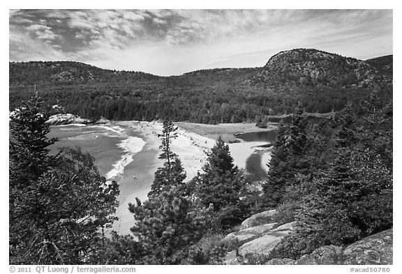 Sand Beach and Behive. Acadia National Park (black and white)