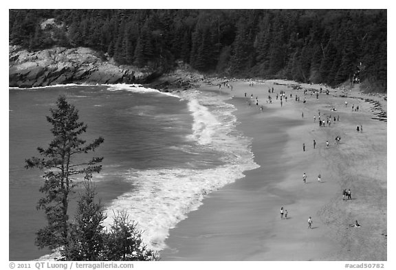 Sand Beach from above. Acadia National Park (black and white)